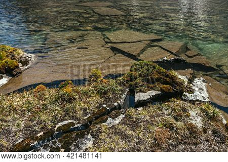 Sunny Beautiful Scenery With Mosses And Grasses On Stones Near Water Edge Of Mountain Lake In Sunlig