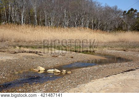 Small Tidal Creek And Saltwater Marsh Along A Beach.