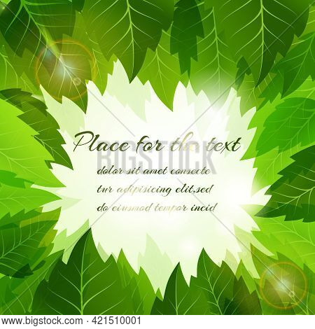 Summer Background With A Frame Of Fresh Green Leaves Surrounding A Central Copyspace For Your Text I