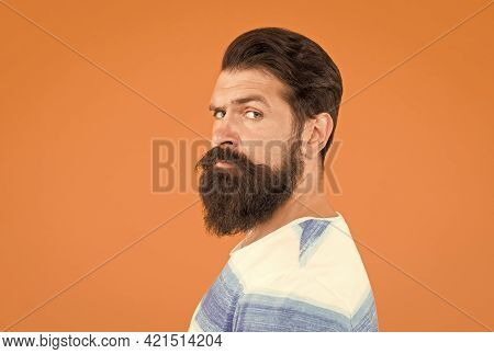 How Do I Look. Handsome Confident Man Has Perfect Hairstyle. Male Facial Care. Portrait Of Brutal Be