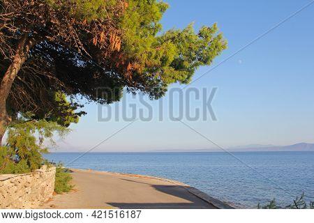 Boardwalk At Seaside On Brac Island With Turquoise Clear Sea Water, Supetar, Brac, Croatia