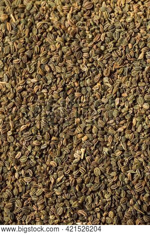 Raw Organic Celery Seeds
