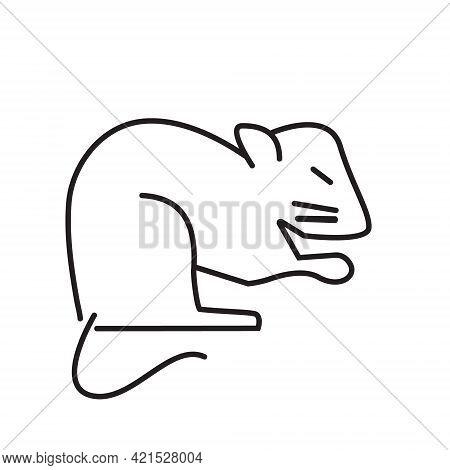 Ferret, Hamster, Rabbit Are The Symbols Shown. Rat, Guinea Pig Icons.