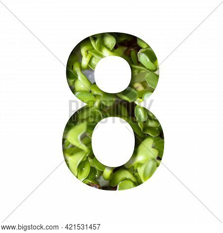 Font On Micro Greenery.the Digit Eight, 8 Cut Out Of Paper On The Background Of Sprouts Of Fresh Bri