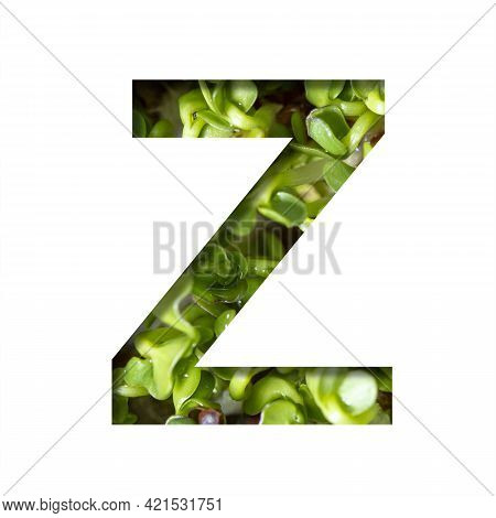 Font On Micro Greenery.the Letter Z Cut Out Of Paper On The Background Of Sprouts Of Fresh Bright Mi