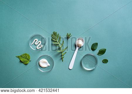 Natural Skin Care Products In Petri Dish And Green Leaves On Green Background, Banner, Copy Space. N