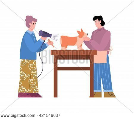 Salon Grooming Masters Or Hairdressers Serving Dog, Vector Illustration Isolated.
