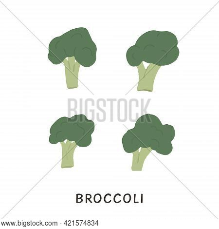 Set Of Different Shaped Broccoli With Stalks And Tops. Brocoli With Lush Heads And Stems. Green Broc