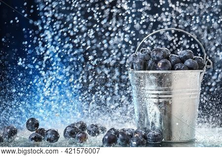 Big Blueberries In A Metal Bucket Closeup Under The Water Drops In A Dark Blue Background. Healthy L