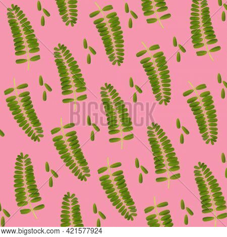 Beautiful plant leaves art concept pattern background. Abstract natural foliage on pink layout