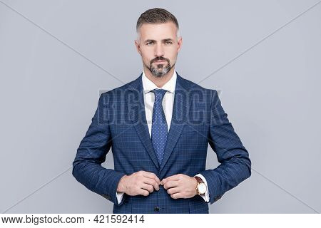 Mature Ambitious Man Businessman In Businesslike Suit Has Grizzled Hair, Business Success