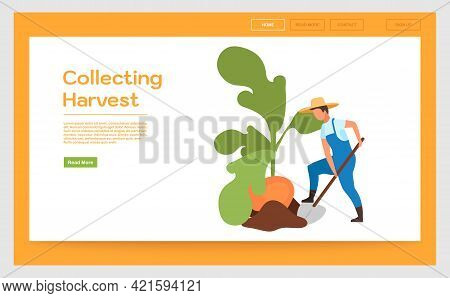 Collecting Harvest Landing Page Vector Template. Vegetable Crops Cultivation Website Interface Idea