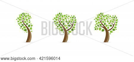 Flat Tree Icon Set. Nature Concept Vector. Different Trees Icons Collection. Green Leaves Set. Ecolo