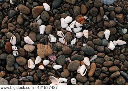 Fragment Of Beach With Lots Of Pebbles. Background With Pattern And Texture Of Pebbles