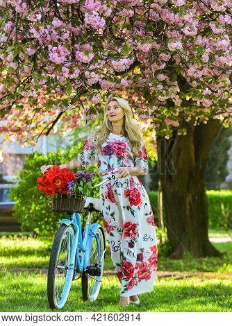 Sakura Season. Tourism Concept. Transportation And Travel. Girl Long Dress Retro Cruiser Bicycle Sak