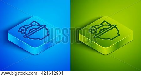 Isometric Line Served Fish On A Bowl Icon Isolated On Blue And Green Background. Square Button. Vect