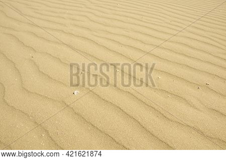 Waves Of Yellow  Sand With Some White Seashells