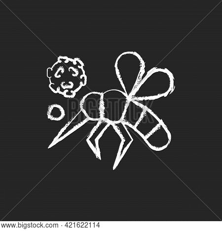 Insects Chalk White Icon On Black Background. Dangerous Poisonous Bugs Spread Diseases. Blood Infect