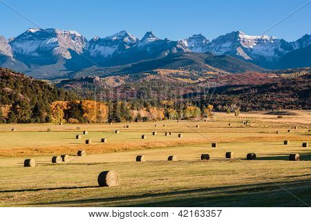 Sunset and autumn color on a ranch near Ridgway, Colorado. poster