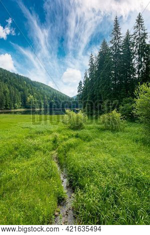 Mountain Summer Landscape With Lake. Beautiful Nature Scenery Of Synevyr National Park, Ukraine. Sun