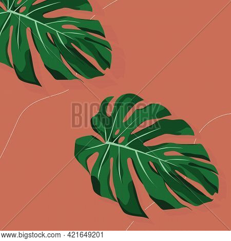 Leaf Of Monstera Deliciosa. Leaves Of Tropical Plant. Trendy Mid Century Art, Boho Home Decor, Abstr