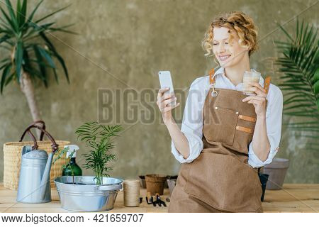 Amazing Blond Romantic Woman Planting Home With Greenery Standing With Phone And Flowerpot. Home Gar