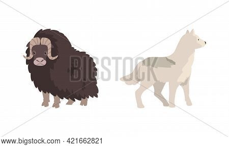 Polar Animals Set, Arctic Bison And Wolf Cartoon Vector Illustration