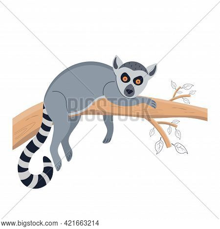 Lemur On A Tree. Animal Lies On A Tree. Character For A Childrens Poster, Postcard, Decor. Vector Il
