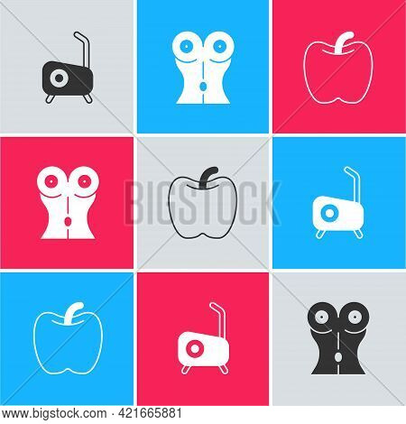 Set Stationary Bicycle, Women Waist And Apple Icon. Vector