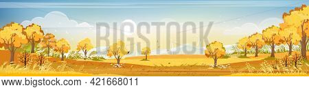 Autumn Landscap Of Farm Field With Blue Sky,wonderland Of Mid Autumn In Countryside With Clouds Sky