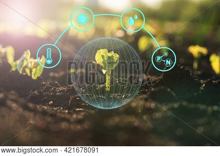 Agriculture And Artificial Intelligence Technology In Smart Farm For Monitoring Seed And Plants. Sma