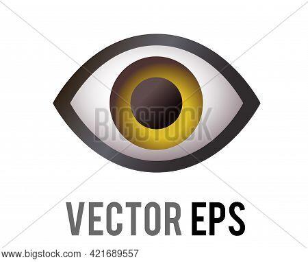 The Isolated Vector Single Human Eye, Looking Forward Icon