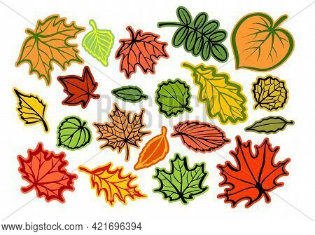 A Set Of Stickers, Autumn Tree Leaves Of Different Types. Design For Plotter Cutting. Multi-colored