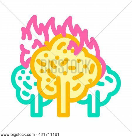Forest Fire Disaster Color Icon Vector. Forest Fire Disaster Sign. Isolated Symbol Illustration
