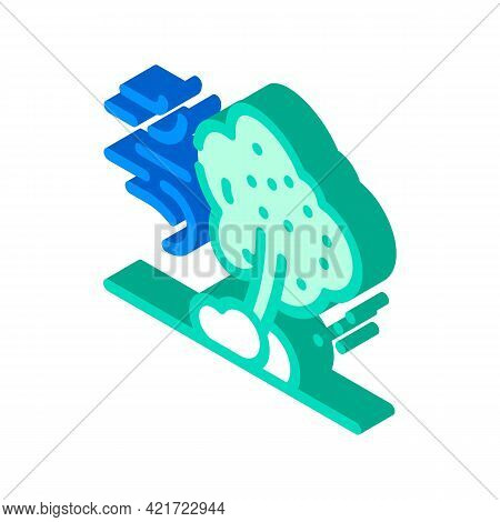 Wind Disaster Isometric Icon Vector. Wind Disaster Sign. Isolated Symbol Illustration