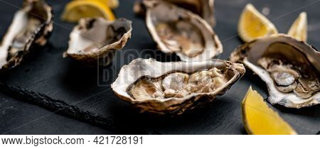 Fresh raw opened oysters served with lemon on balck platter. Seafood delicatessen
