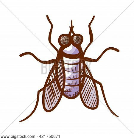 Stable, Barn, Biting House, Dog Or Power Mower Fly Hand Drawn Icon. Insect Sucking Mammals Blood Pic