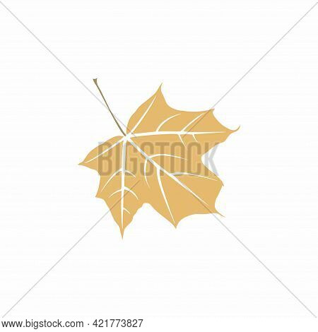 Graceful Ochre Leaf. Flat Twig. Vector Isolated Element. Garden Plant. Icon. Summer Or Spring Design