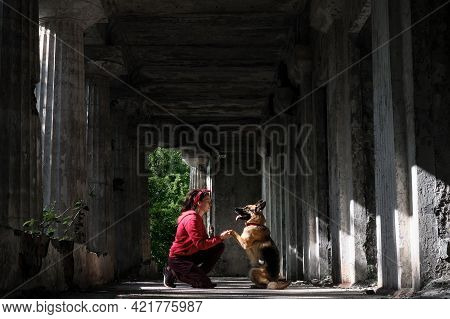 Young Pretty Woman With German Shepherd Sits In Abandoned Building Against Backdrop Of Large Tall Ma