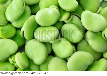 A heap of fresh harvested Vicia faba, also known as broad bean, fava bean, or faba bean isolated on white