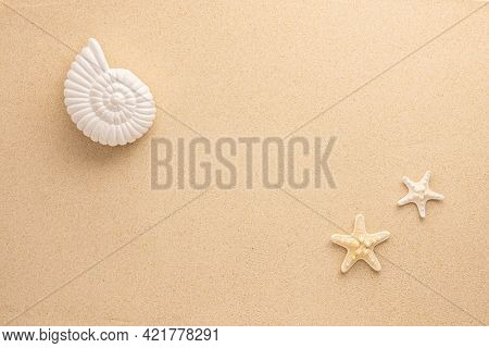 Summer sea concept. Starfishes and snail shell on sand. Top view. Copy space.