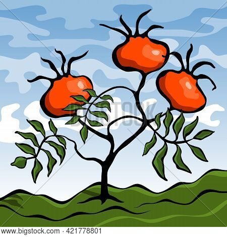 Stylized Rosehip Plant With Leaves And Orange Fruits. Landscape With A Fruiting Tree. Vector Illustr