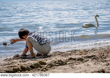 Child Playing Sands On The Beach While Swan Swimming In Water. One Little Asian Boy In Casual Clothi