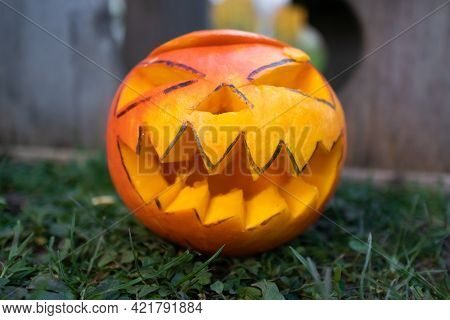 Ground Angle Shot. Close Up Of A Childs Hands Putting Carved Pumpkin, Jack-o-lantern, In The Grass,