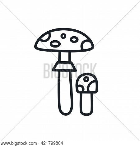 Fly Agaric Toadstool Icon. Vector Isolated Linear Icon Contour Shape Outline. Thin Line. Modern Glyp