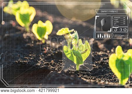Agriculture With Iot And Artificial Intelligence Technology In Smart Farm With Precision Sensor For