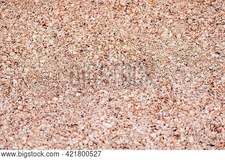 Sand And Seashell. Seashells By The Sea Texture.