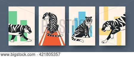 Set Of Contemporary Art Posters With Wild Tiger. Vector Illustration. .collection Of African Feline