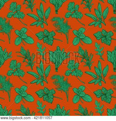Seasonings And Herbs Pattern. Aromatic , Healthy Herbs. Basil, Oregano, Parsley, Dill.hand-drawn Vec