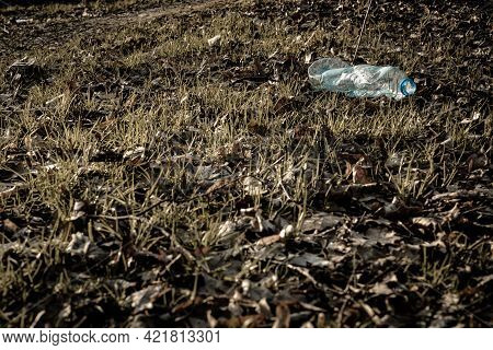 Environmental Concept. Forest With Trash, Plastic Rubbish. Garbage Waste In Environment Woodland. Ec